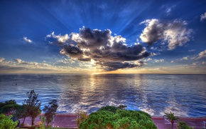 Wallpaper clouds, promenade, HDR, the sun, sea, coast, trees, road, horizon, the sky, rays, Monaco