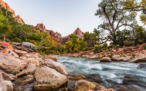 Picture river, stones, Utah, USA, Zion National Park
