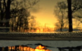 Picture winter, asphalt, trees, reflection, puddle, sunset, depth of field