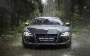 Picture car, machine, auto, forest, fog, rain, Audi, audi, race, Batman, car, sports car, camouflage, car, ...