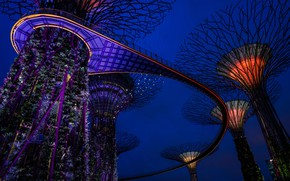 Picture night, design, lights, design, Singapore, tower, gardens, Gardens by the Bay