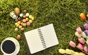 Picture grass, flowers, eggs, spring, colorful, Easter, tulips, wood, flowers, tulips, spring, Easter, eggs, decoration, Happy, …
