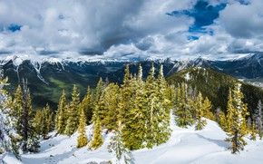 Picture winter, forest, clouds, snow, trees, mountains, Alps, forest