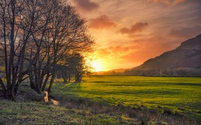 Wallpaper sunset, England, glow, stream, trees, field, Cumbria