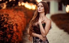 Picture makeup, sponge, curls, retouching, Peter Paszternak, Autumn the year's last loveliest smile
