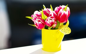 Picture flowers, bouquet, tulips, lake