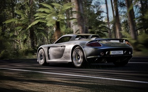 Picture road, speed, supercar, Carrera, Porsche Carrera GT