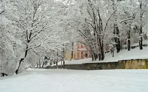 Picture trees, the city, Winter, Snow, Winter, Frost, Snow, Trees