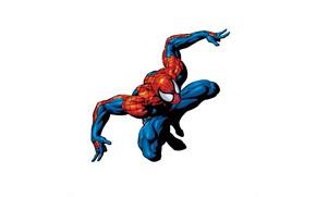 Wallpaper superhero, Spider-man, Spider-Man