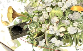 Picture girl, flowers, anime, art, Vocaloid, the gramophone