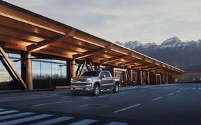 Picture Truck, Silver, Silverado, Z71, Pick Up, Chevroet, 2019