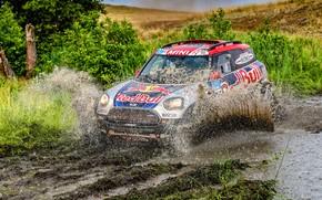 Picture Mini, Sport, Desert, Speed, Race, Dirt, Squirt, Rally, SUV, Rally, 105, X-Raid Team, MINI Cooper, …