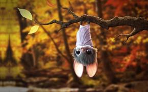 Picture forest, rendering, branch, mouse, bat, baby, children's, Autumn Bat, Matthew Pear