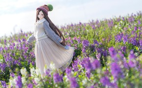 Picture flowers, doll, dress, meadow