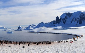 Picture people, penguins, Antarctica