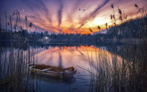 Picture sunset, nature, lake, boat, reed