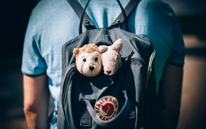 Picture back, backpack, soft toys