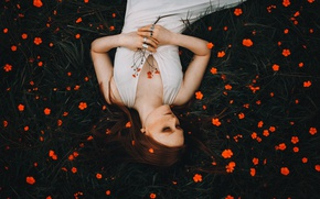 Picture girl, flowers, mood, red, redhead