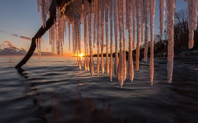 Picture winter, sunset, lake, icicles, Canada, snag, Canada, Lake Ontario, lake Ontario