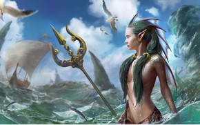 Picture sea, the sky, look, hair, ship, mermaid, seagulls, fantasy, art, Trident, profile