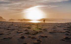 Picture sea, shore, walk