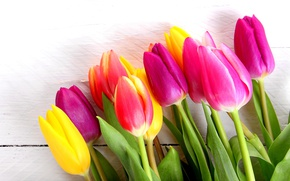 Picture flowers, bouquet, colorful, tulips, wood, romantic, tulips, spring