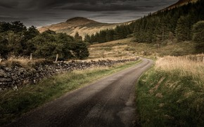 Wallpaper road, grass, mountains, tree