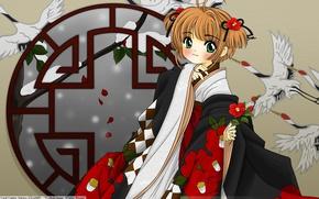 Picture snow, petals, kimono, window, two tails, cranes, Sakura - collector cards, Cardcaptor Sakura, Camellia, Sakura …