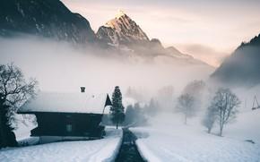 Picture mountain, morning, alps, switzerland, mist