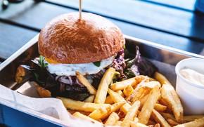 Picture egg, sauce, potatoes, Burger, lettuce, fries