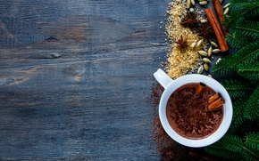 Picture branches, hot, cup, chocolate, cocoa, spices, hot chocolate, fir tree