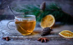 Picture tea, orange, drink, cinnamon, bumps, fir-tree branches