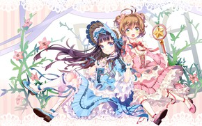 Picture girls, wings, angel, anime, art, girl, Card Captor Sakura, Sakura - collector cards