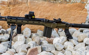 Picture weapons, rifle, weapon, custom, rifle, M1A, M14, marksman, Blackfeather