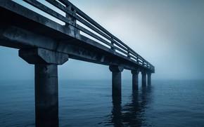 Picture sea, bridge, fog
