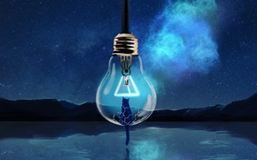 Picture cat, the sky, light bulb, water, night, nature