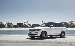 Picture white, wheels, niche, RANGE ROVER