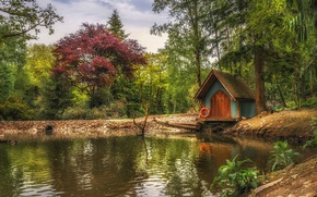Picture trees, pond, Park, England, house, pond, England, Wales, Weds