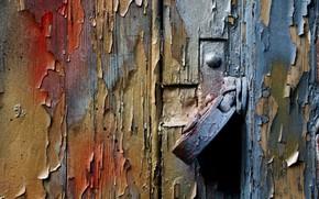 Picture background, castle, the door