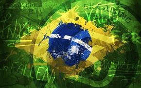 Picture brasil, eSports, fall, sk gaming, fer, coldzera, taco, fnx