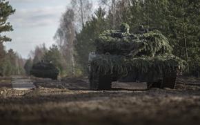 Picture forest, soldier, man, Leopard 2A6, tank, machine gun, cannon, German Army