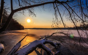 Picture winter, forest, the sky, the sun, rays, snow, trees, branches, river