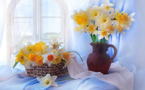 Picture flowers, bouquet, vase, still life, daffodils