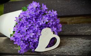 Picture purple, flowers, tree, bouquet, pot, heart