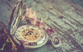 Picture flowers, retro, background, watch
