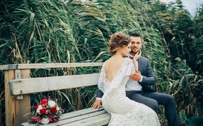 Picture love, joy, bench, bouquet, dress, hairstyle, the bride, wedding, the groom