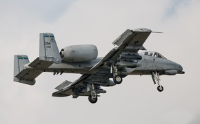 Picture weapons, flies, A-10 Thunderbolt II, combat aircraft