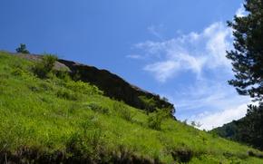 Picture grass, landscape, nature, stones, beautiful :)