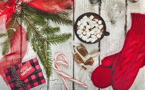 Picture spruce, candy, mittens, cocoa, mittens, marshmallows