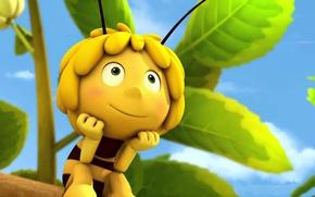 Picture sky, leaf, animated film, konoha, bee, animated movie, Maya the Bee, Maya the Bee Movie